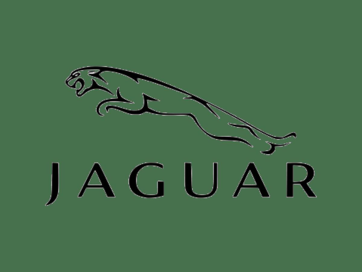 Safe Space Clients 1200x900 Jaguar